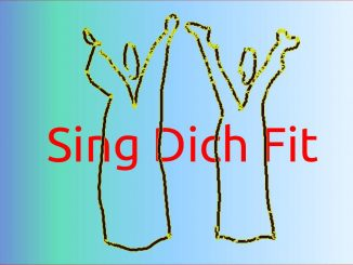 SING DICH FIT - Musik ist mehr - Bernd Michael Sommer